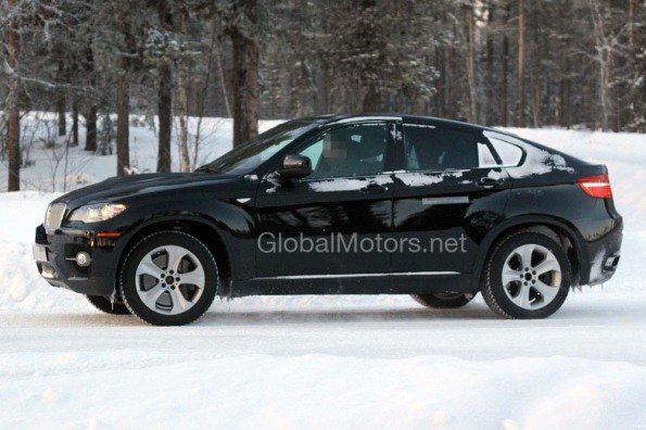 2010 BMW X6 Images